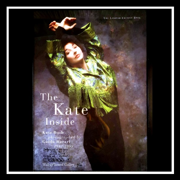The Kate Inside Poster 1