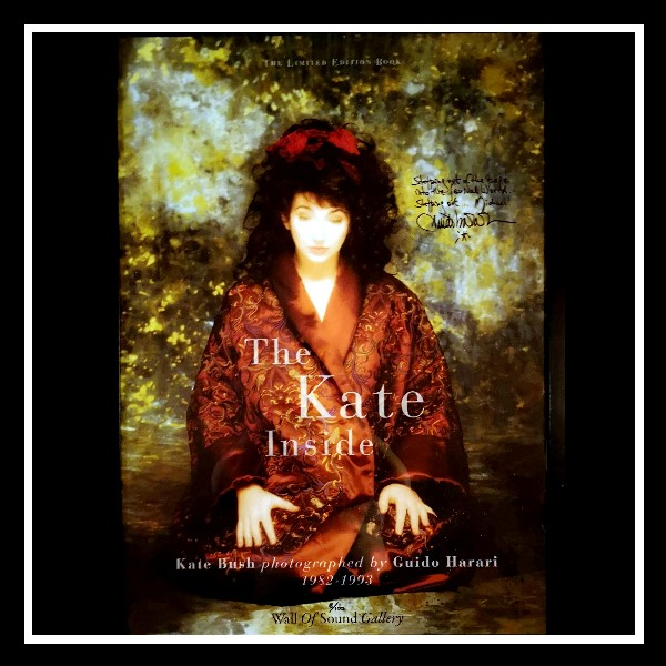 The Kate Inside Poster 2