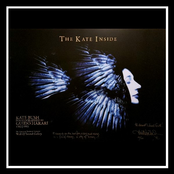 The Kate Inside Poster 4