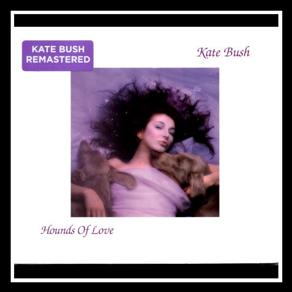 Hounds Of Love Remastered